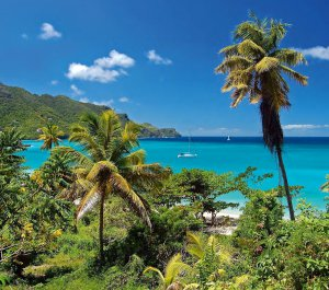 St. Lucia and the Grenadines