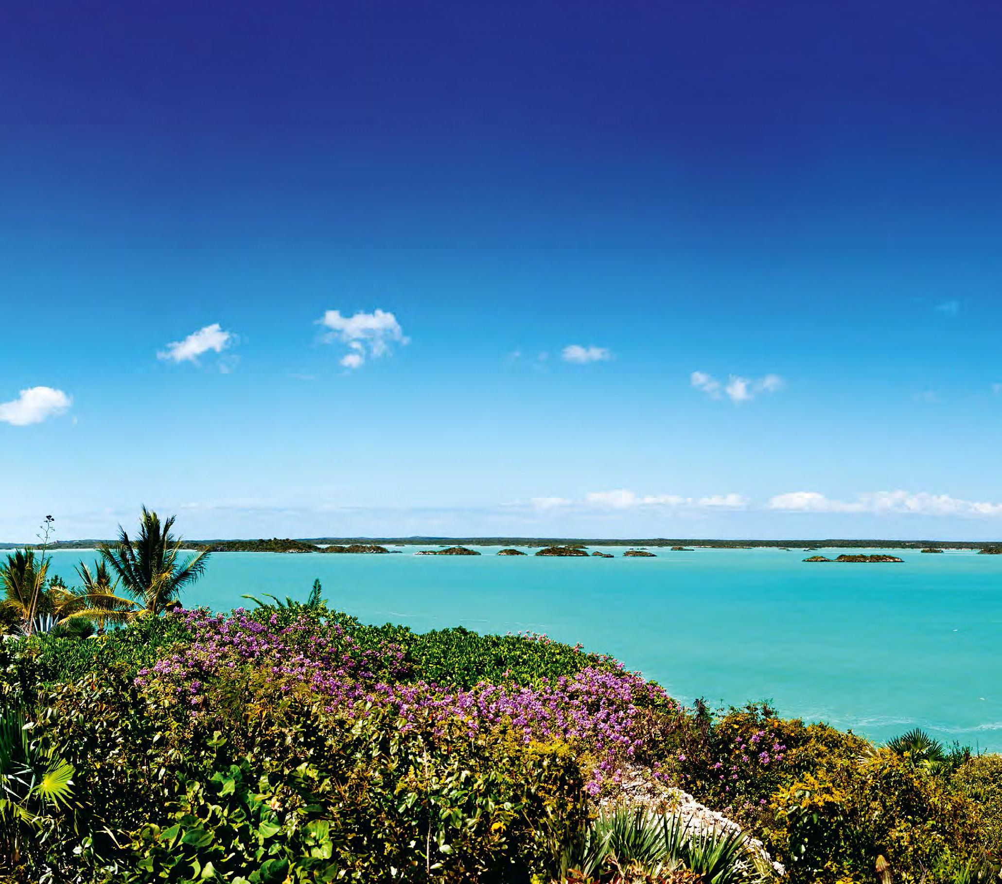 Turks and caicos atlantic yacht and ship for Turks and caicos fishing charters